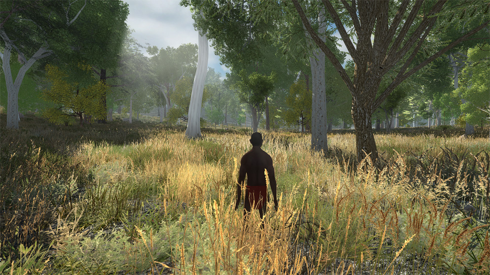 Screenshot of an Aboriginal man standing in waist-high yellow grass, looking out towards trees.
